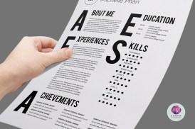 curriculum vitae diseno - Modelo 2015 de Curriculum Vitae Tipográfico
