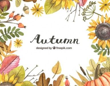 hojas secas pintadas acuarelas onoto - Descarga hojas de otoño en vectores