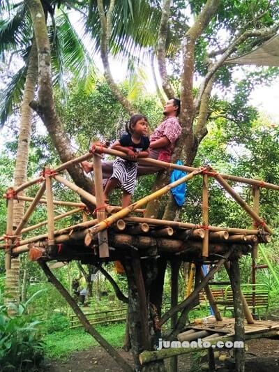 Rumah Pohon Pendek
