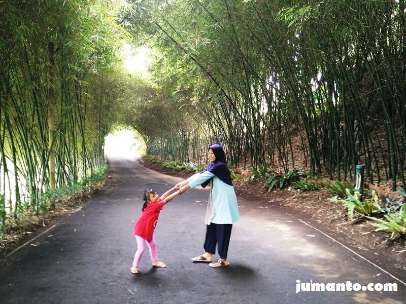 foto di lorong bambu dusun bambu bandung