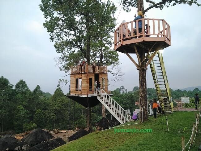 rumah pohon puncak mas lampung
