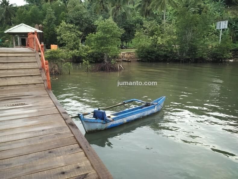 hutan mangrove desa gebang pesawaran lampung