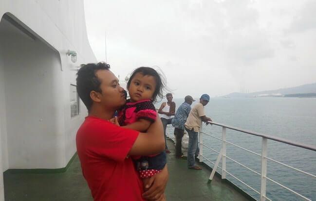 naik kapal merak bakauhenii