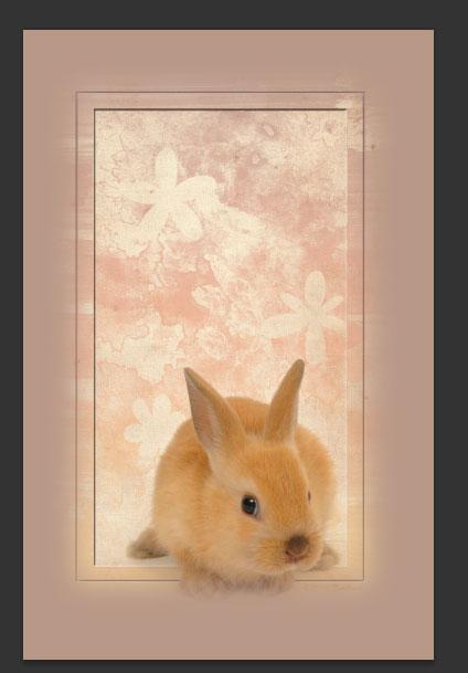konijntje 16