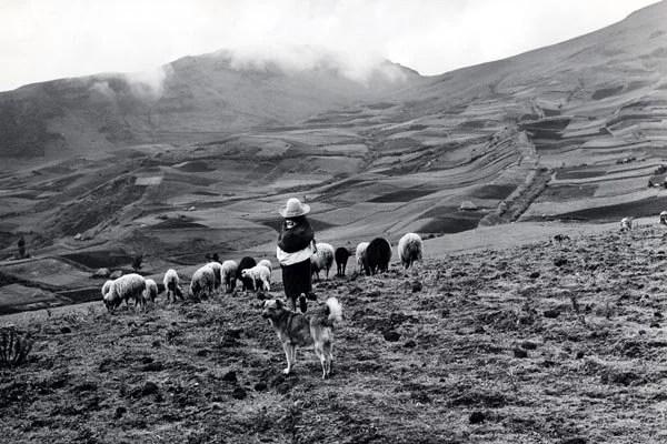 পেরু (Peru), দক্ষিণ আমেরিকা (South America)। ছবিঃ IOM / 1971