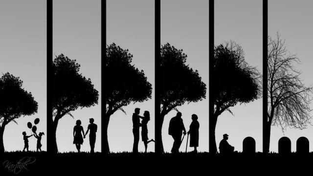 Life-Love-and-Death