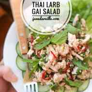 Easy Thai Larb Gai (Spicy Chicken Salad)