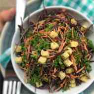 Easy Red Cabbage Slaw Salad Recipe