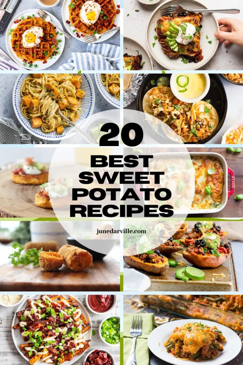 Are you a sweet potato of fan? Then you should definitely check out this roundup of some of the best sweet potato recipes ever!