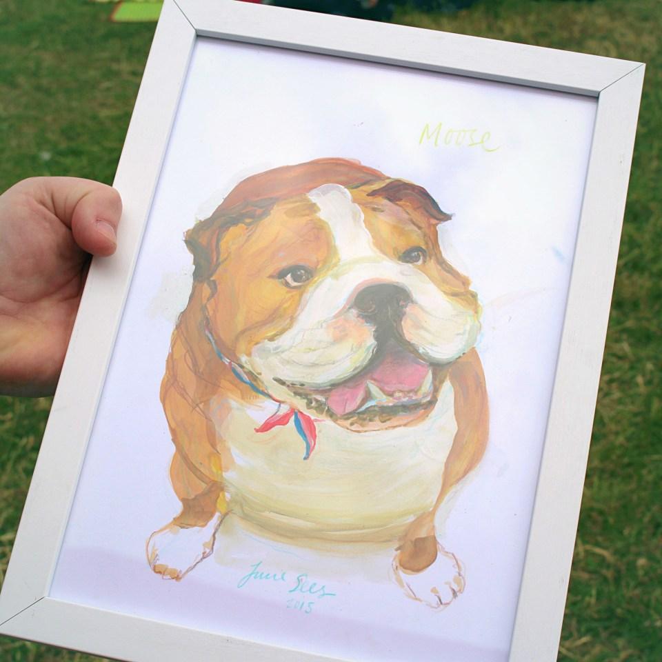 june sees, pet portrait, illustration