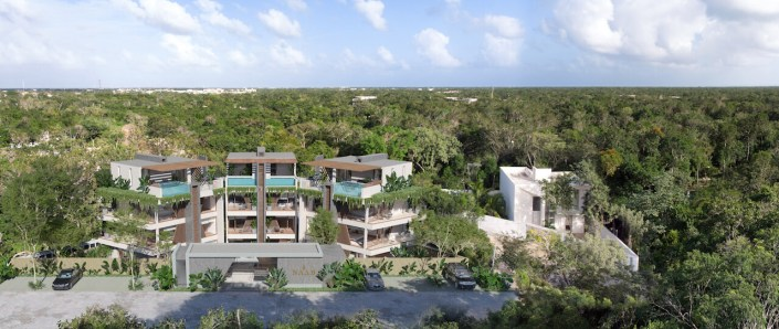 NAAB_jungle_realtor_real_estate_Tulum_riviera_maya_naturaleza_maya