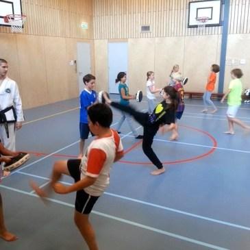 Taekwon-Do op basisscholen Nieuwerkerk a/d IJssel