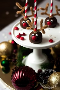 Our Reindeer Cake Pops Tutorial via Craftsy!