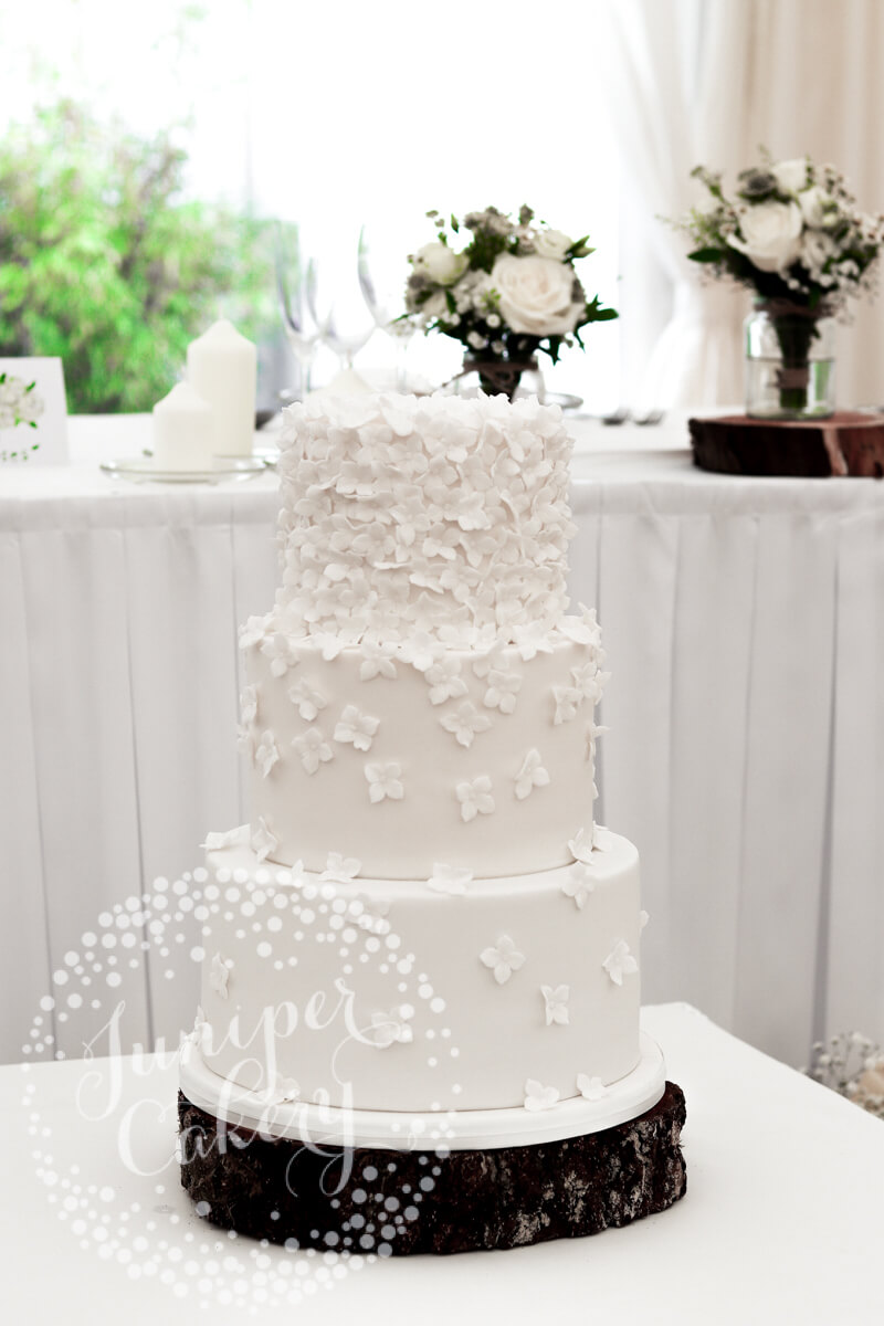 Elsham Hall wedding with white blossom wedding cake by Juniper Cakery