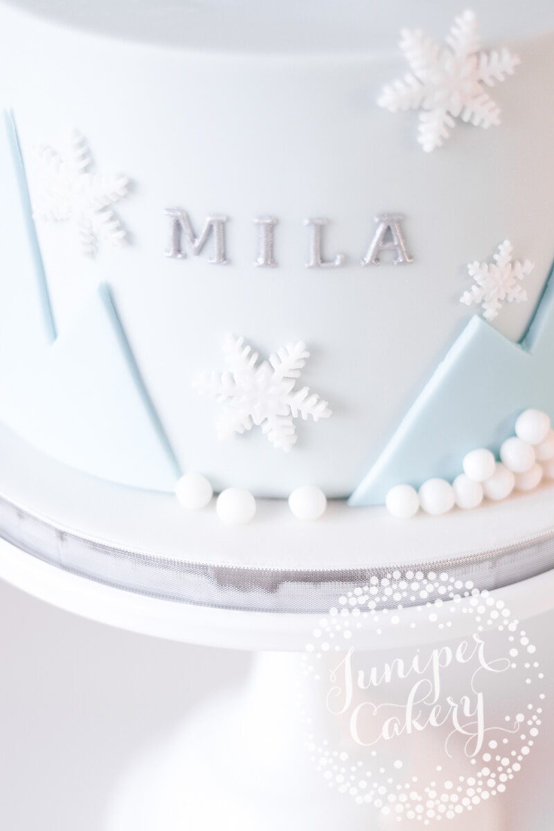 Frozen party cake by Juniper Cakery