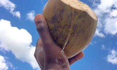 "L'eau de coco ""Dlo kokoye"" très bon pour la santé 31"