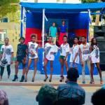 VIREHA : Un autre Haïtien pour une nouvelle Haïti 28