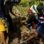 VIREHA : Un autre Haïtien pour une nouvelle Haïti 35