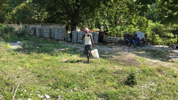 Covid-19: en manque de tout, des habitants de Pétion-Ville s'en sortent difficilement