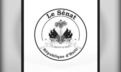 18 Janvier 1807 : première nomination du sénat de la République