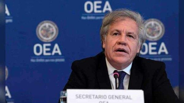 Observation électorale: le Conseil Permanent de l'OEA accueille favorablement la demande du président Jovenel Moïse