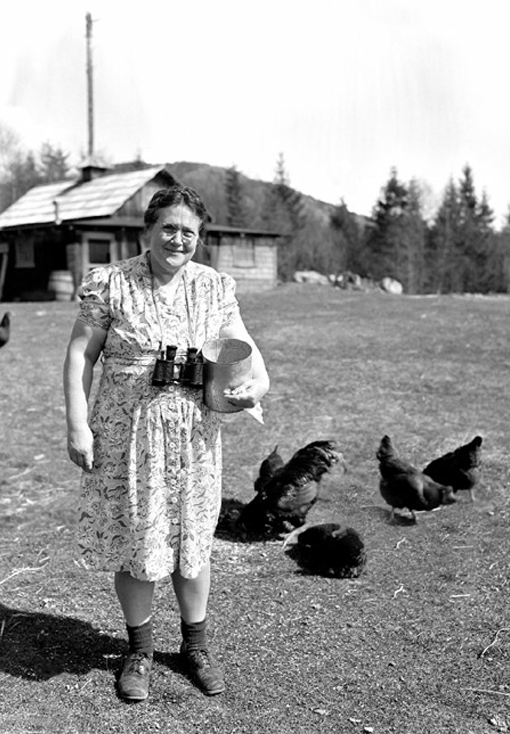 With a smile on her face and binoculars around her neck, this Aircraft Detection Corps volunteer feeds her chickens while ensuring Canada's safety, June 1943.