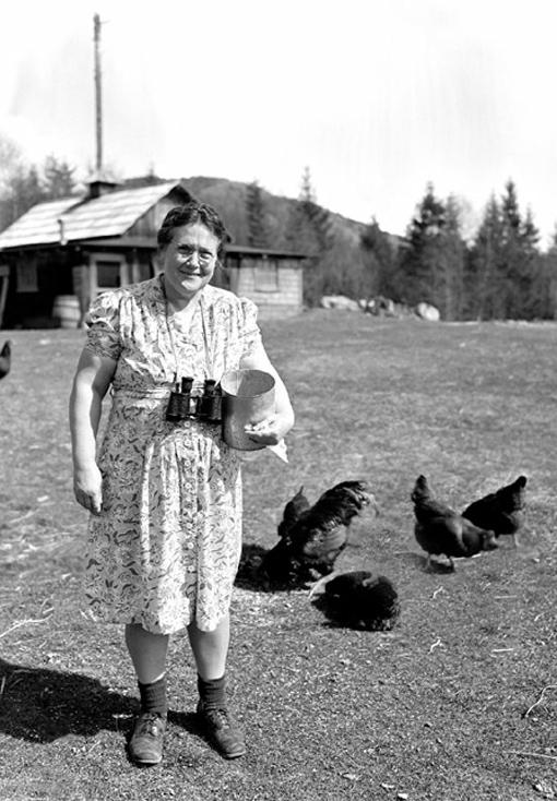 Sourire aux lèvres et jumelles au cou, ce membre du Corps de détection aérienne nourrit ses poules en même temps qu'elle assure la sécurité de son pays. Juin 1943.