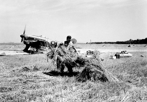 Life goes on… A Canadian pilot giving a hand to a French farmer for the wheat harvest; in the field, No 404 Squadron Typhoons.