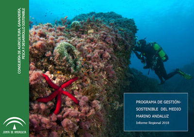 portada informe marino 2018
