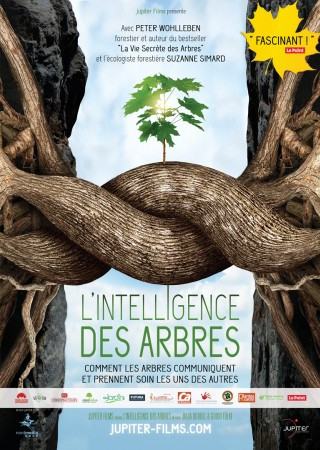 Intelligence des Arbres, L'