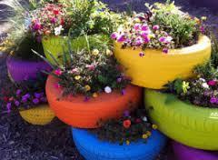 Plantando em potes reciclados