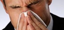 Sykefravær og egenmelding  – en kort oversikt