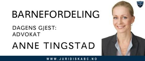 BARNEFORDELING med advokat Anne Tingstad