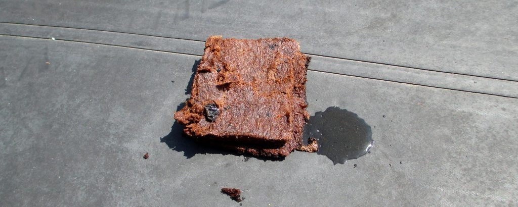 Trapped Moisture in Roofing System