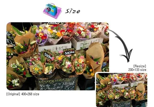 aplikasi edit foto di komputer Photo scap