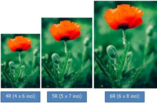 Contoh Ukuran Foto 5R