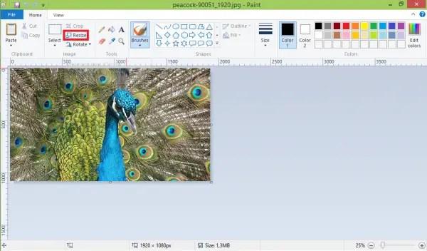 Cara Mengecilkan Ukuran Foto Dengan Paint3