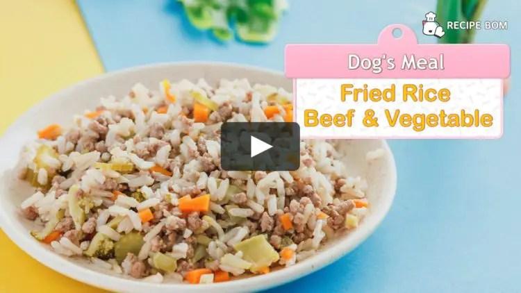 Contoh Teks Prosedur Kompleks Membuat Makanan (nasi goreng)