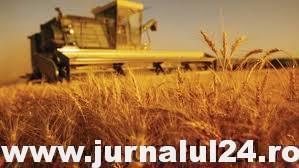 România printre principalii exportatori de cereale