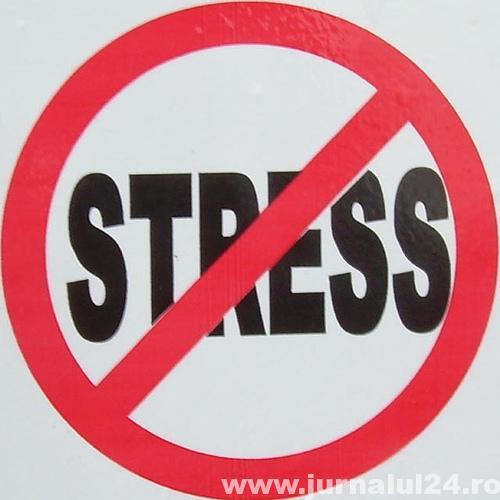 fara stress