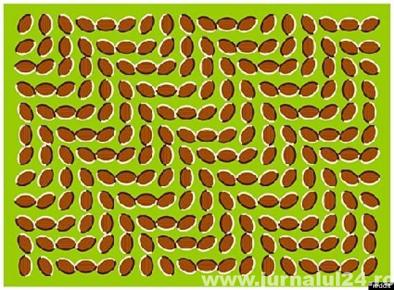 iluzie optica si vizuala