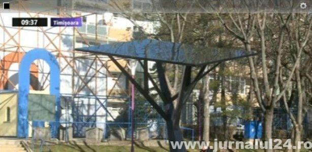 copacul high tech timisoara