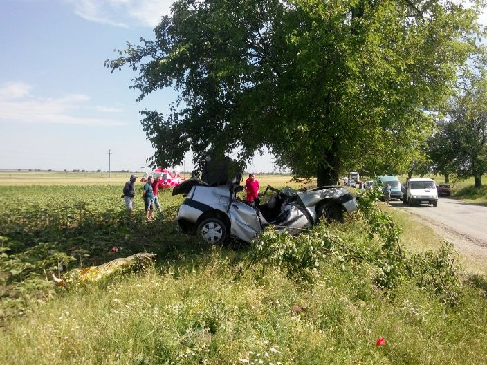accident dn 54