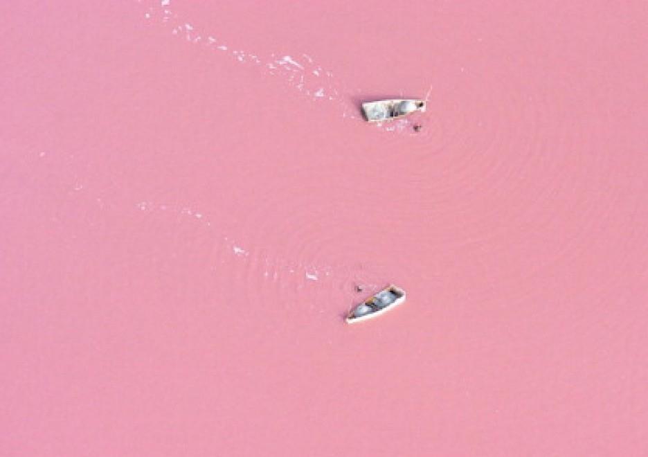 lac roz