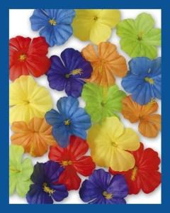 veelkleurige-bloemenlijst