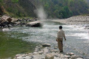 Kirphal feeding a mahseer swim on the Ramganga river