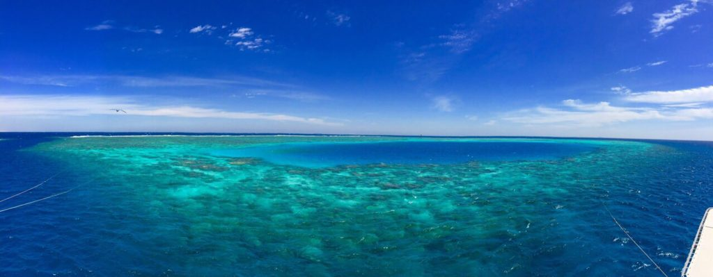 Einige der schönsten Korallenriffe des Roten Meeres erreicht man nur auf einer Tauchsafari. Foto: Sascha Tegtmeyer
