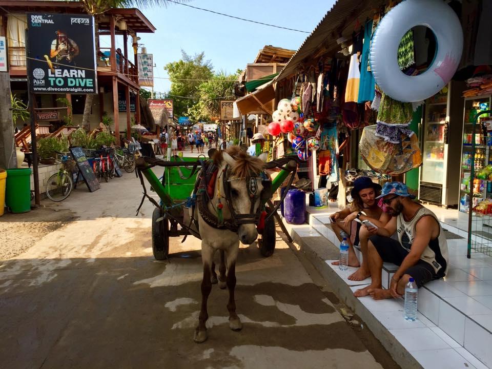 Relaxtes Inselleben – Autos gibt's auf Gili Trawangan nicht, nur Kutschen und Fahrräder.