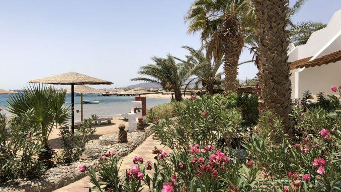 Ägypten - Urlaub 2018: Das Rote Meer liegt wieder voll im Trend! Foto: Sascha Tegtmeyer