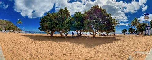 Schatten spendende Bäume am Strand Playa de las Teresitas. Foto: Luisa Praetorius